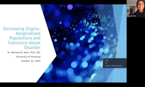 Title Screen: Decreasing Stigma: Marginalized Populations and Substance Abuse Disorder