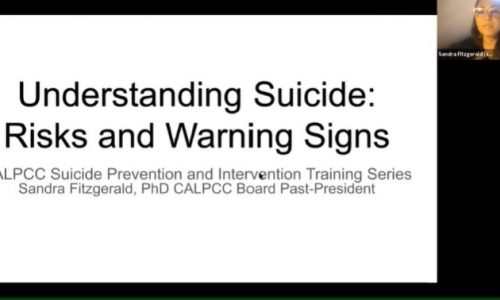 Photo: screenshot, Understanding Suicide: Risks and Warning Signs