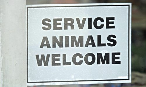 """Photo: sign that reads """"service animals welcome"""""""